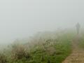 .. fog, like a shroud ..