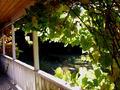 Steve's Porch